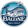 new_baleine_nav_logo100